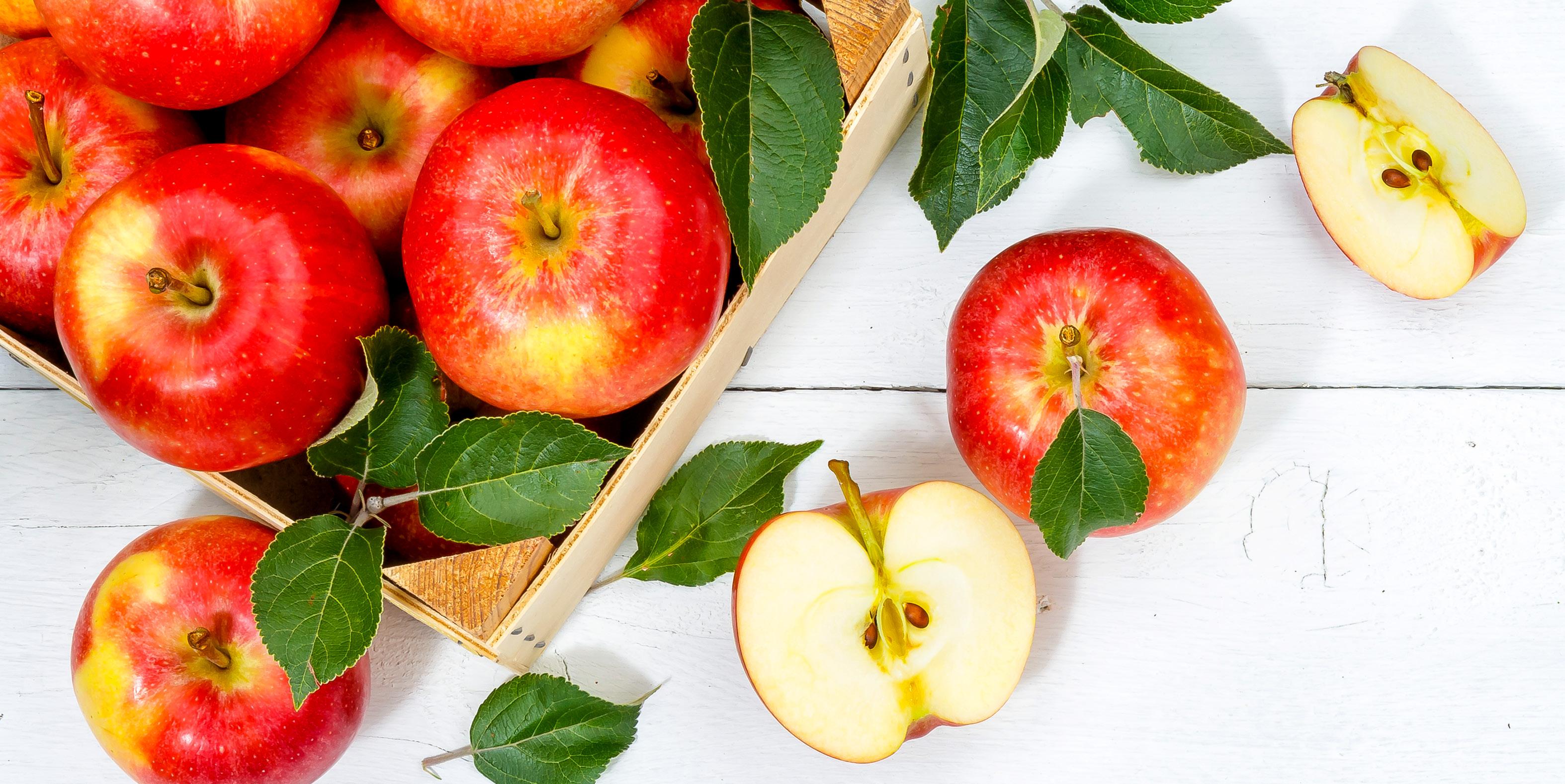 d+p 2021-2 Apfel